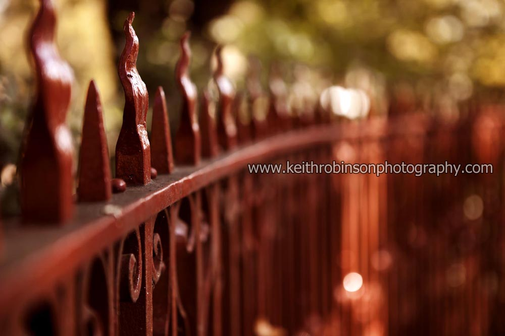 The Red Fence